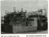 02-1901-trnovany-zeleny